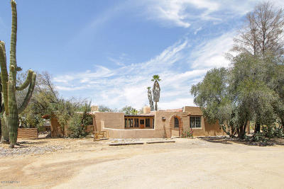 Tucson Single Family Home For Sale: 7275 N Sandario Road
