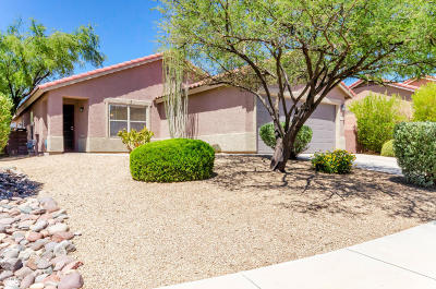 Tucson Single Family Home For Sale: 3437 N Oak Springs Court
