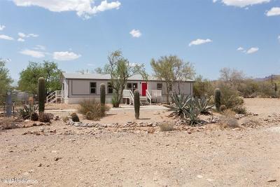 Catalina, Corona De Tucson, Green Valley, Marana, Oro Valley, Sahuarita, South Tucson, Tucson, Vail Manufactured Home For Sale: 7366 W Bopp Road
