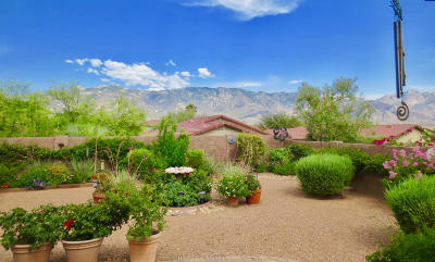 Tucson Single Family Home For Sale: 14924 N Saddle Bred Road