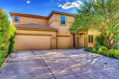 Sahuarita Single Family Home For Sale: 1116 E Empire Cyn Lane