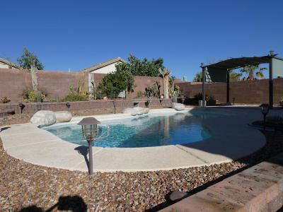 Marana Single Family Home For Sale: 12686 N Owl Head Canyon Road