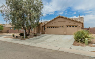Sahuarita Single Family Home For Sale: 455 N Old Camp Lane