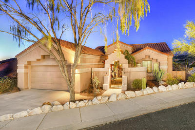 Tucson Single Family Home For Sale: 10054 N Bighorn Butte Drive
