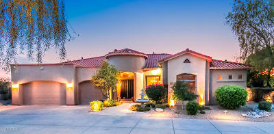 Pima County Single Family Home For Sale: 6044 N Pinnacle Ridge Drive