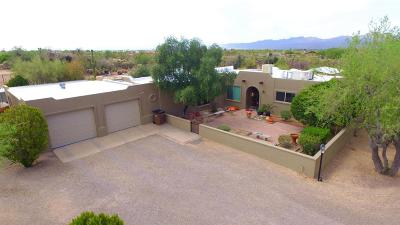 Tucson Single Family Home For Sale: 4101 W Lambert Lane
