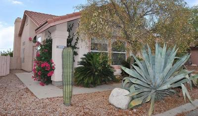 Pima County Single Family Home For Sale: 9961 N Black Mesa Trail