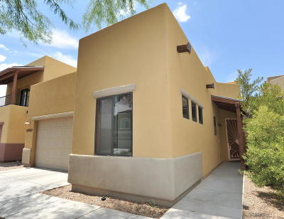 Single Family Home Active Contingent: 8749 N Mugho Pine Trail