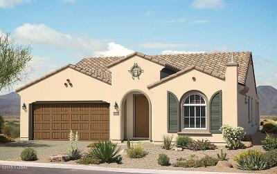 Pima County Single Family Home For Sale: 13988 N Del Webb Trail