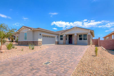 Marana Single Family Home For Sale: 7195 W Cactus Flower Ps W