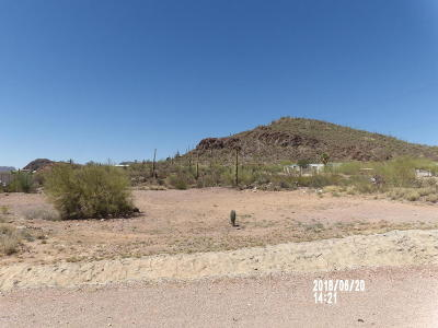 Tucson Residential Lots & Land For Sale: 4460 W Valencia Road