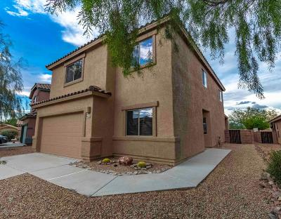 Tucson Single Family Home For Sale: 8016 W Star Catcher Drive