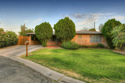 Tucson Single Family Home For Sale: 3331 N Forgeus Avenue