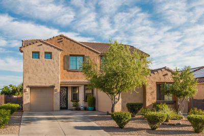 Oro Valley Single Family Home For Sale: 1245 W Keuhne Court