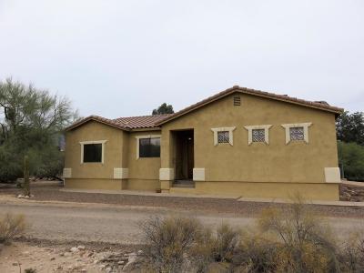 Tucson Single Family Home Active Contingent: 786B W Las Lomitas Road