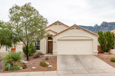 Pima County Single Family Home For Sale: 11908 N Meteor Place