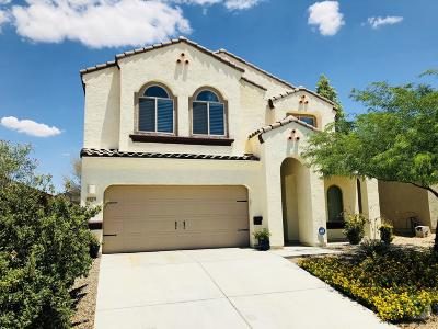 Single Family Home For Sale: 6733 S Drift Boat Drive