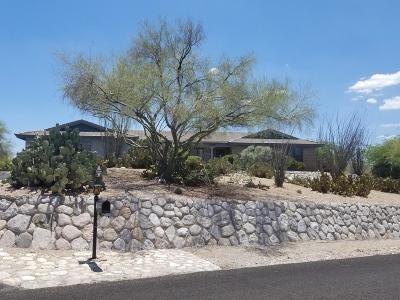 Tucson Single Family Home For Sale: 5940 E Territory Avenue