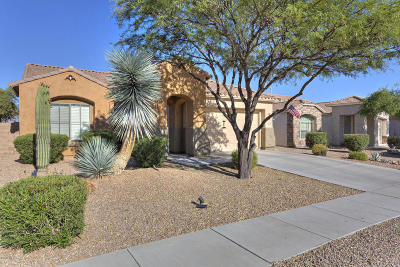 Oro Valley Single Family Home For Sale: 13302 N Woosnam Way