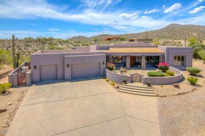 Pima County Single Family Home For Sale: 1492 N Coral Bells Drive