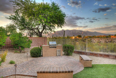 Tucson Single Family Home For Sale: 4974 N Louis River Way