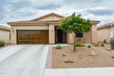 Marana Single Family Home For Sale: 4506 W Harmony Ranch Place