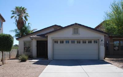 Pima County Single Family Home For Sale: 13055 N Desert Olive Drive