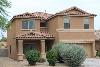 Tucson Single Family Home For Sale: 8454 S Hunnic Drive