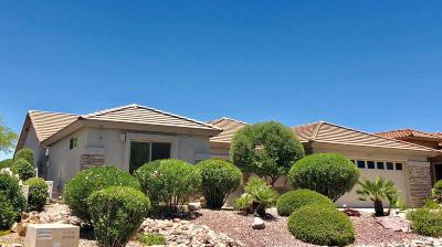 Single Family Home For Sale: 38394 S Desert Highland Drive