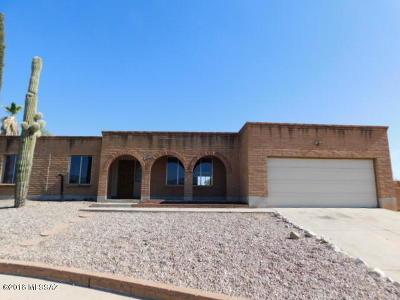 Tucson Single Family Home For Sale: 9540 E Stefan Road