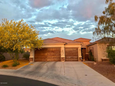 Marana Single Family Home Active Contingent: 12584 N Golden Mirror Drive