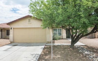 Pima County Single Family Home For Sale: 9301 N Centipede Avenue