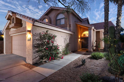 Tucson Single Family Home For Sale: 10508 N Fairway Vista Lane