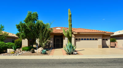 Oro Valley Single Family Home For Sale: 14355 N Green Meadow Lane