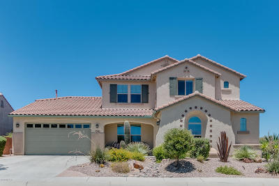 Pima County Single Family Home For Sale: 12579 N Wind Runner Parkway