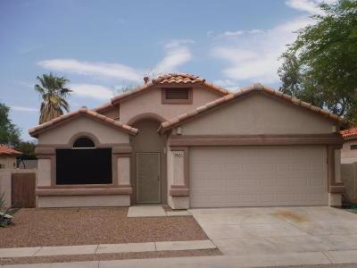 Tucson Single Family Home Active Contingent: 9641 E Briana Lane