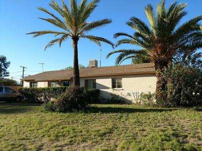 Pima County, Pinal County Single Family Home For Sale: 4850 E 17th Street