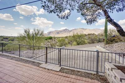 Tucson Single Family Home For Sale: 5175 N Swan Road