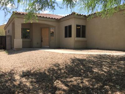 Pima County, Pinal County Single Family Home For Sale: 8011 S Talaco Trail