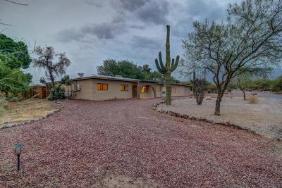 Tucson Single Family Home For Sale: 1370 W Liddell Place