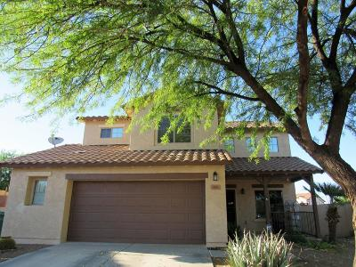 Sahuarita Single Family Home For Sale: 498 W Camino Parrilla
