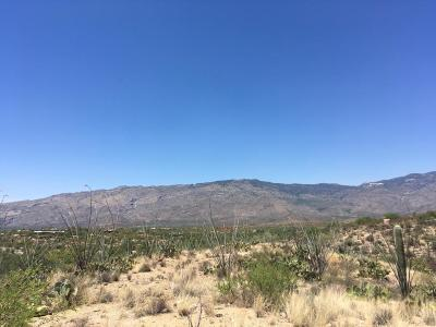 Vail Residential Lots & Land For Sale: 8130 S Pistol Hill Road