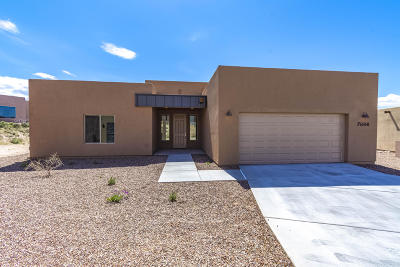 Pima County Single Family Home For Sale: 7684 S Galileo Lane