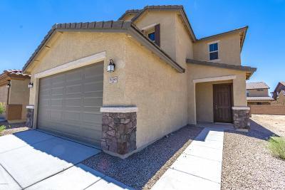 Tucson Single Family Home For Sale: 9566 S Trapper Ridge Drive