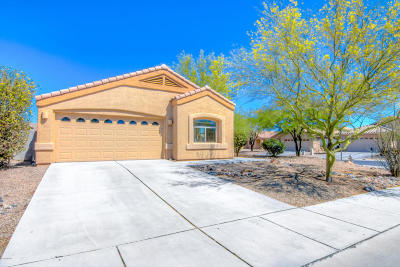 Pima County, Pinal County Single Family Home Active Contingent: 6541 E Stadium Parkway