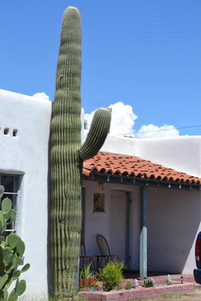 Residential Income For Sale: 613 E Mohave Road