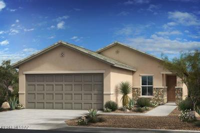 Pima County Single Family Home For Sale: 9471 S Desert Fauna Loop