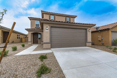 Pima County Single Family Home For Sale: 9473 S Desert Fauna Loop
