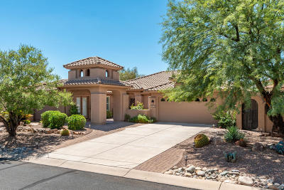 Tucson Single Family Home For Sale: 39498 S Moonwood Drive