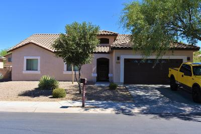 Marana Single Family Home For Sale: 11088 W Botteri Drive